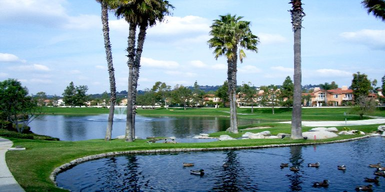 Tustin – The City of the Trees