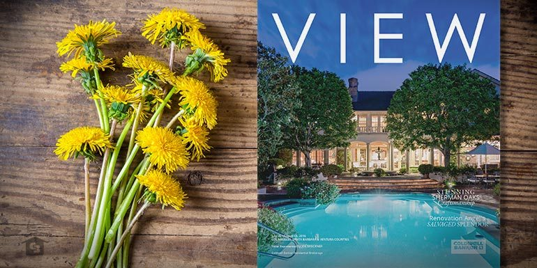 This Week's Newest View Magazine