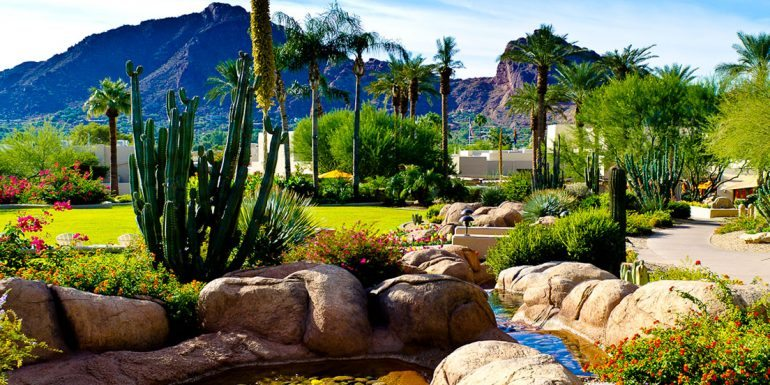 Community Spotlight: Paradise Valley